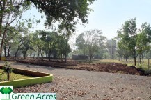 Green Acre- Road View